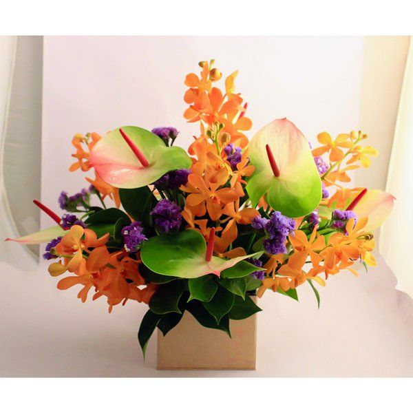 FlowerBox Mokara Orchids & Anthuriums In A Brown Box Best Diwali Flowers