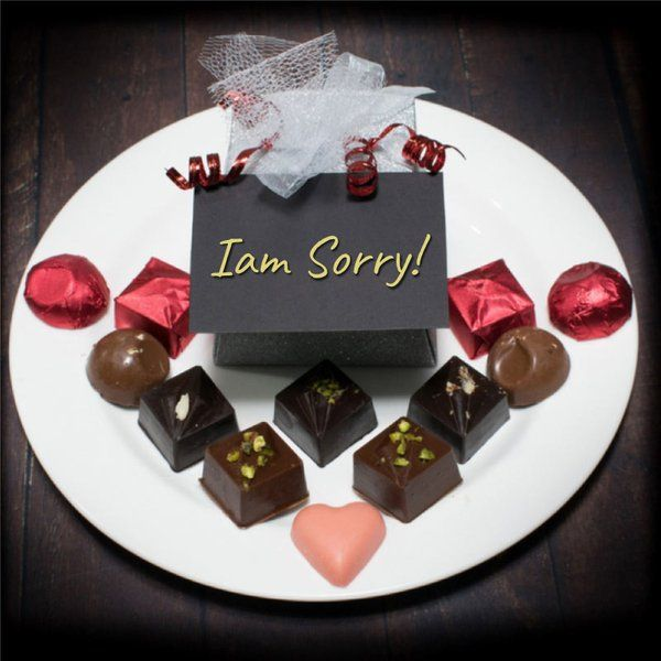 The Twenty Handmade Chocolates I'm Sorry! (Box of 20)  Sorry Gifts