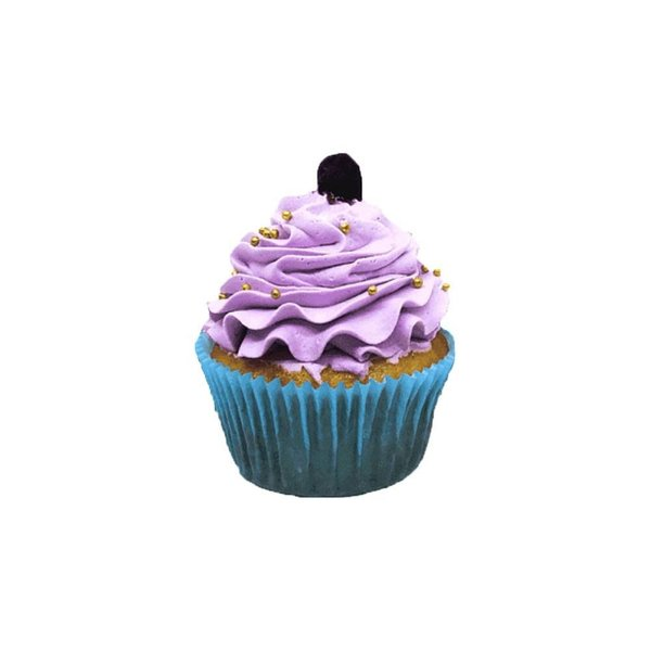 Blueberry Cup Cake Gifts Below 50 Rupees