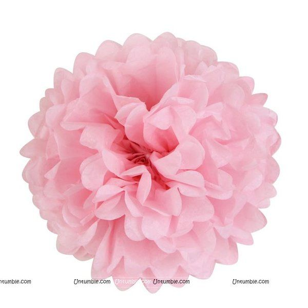 Untumble 14inch Baby Pink Tissue Pom Pom Graduation Day Decorations
