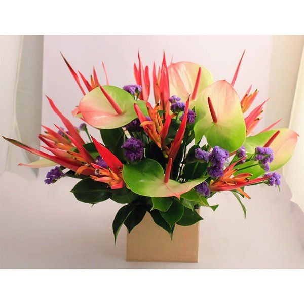 FlowerBox Heliconia & Anthuriums In A Brown Box 60th Birthday Gifts For Mom