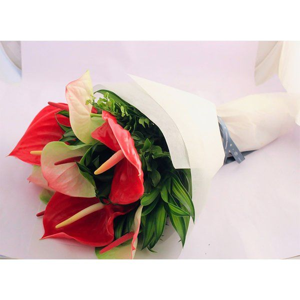 FlowerBox Mixed Anthuriums Hand Bouquet 25th Anniversary Gift Ideas For Husband
