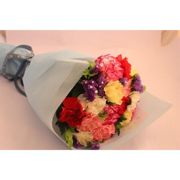 Romantic Gifts for Girlfriend under 1000 Mixed Carnations Hand Bouquet