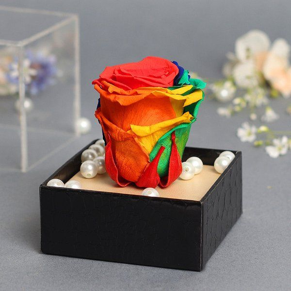 FlowerAura Preserved Eternal Rainbow Love Saga Flowers For Girlfriend